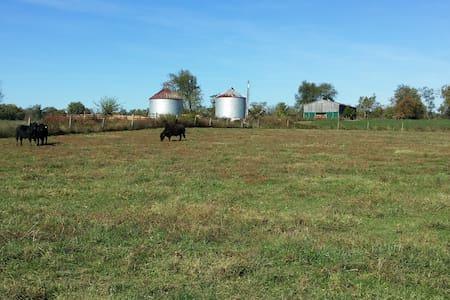 Working farm near Ky. Horse Park - Lexington - Rumah