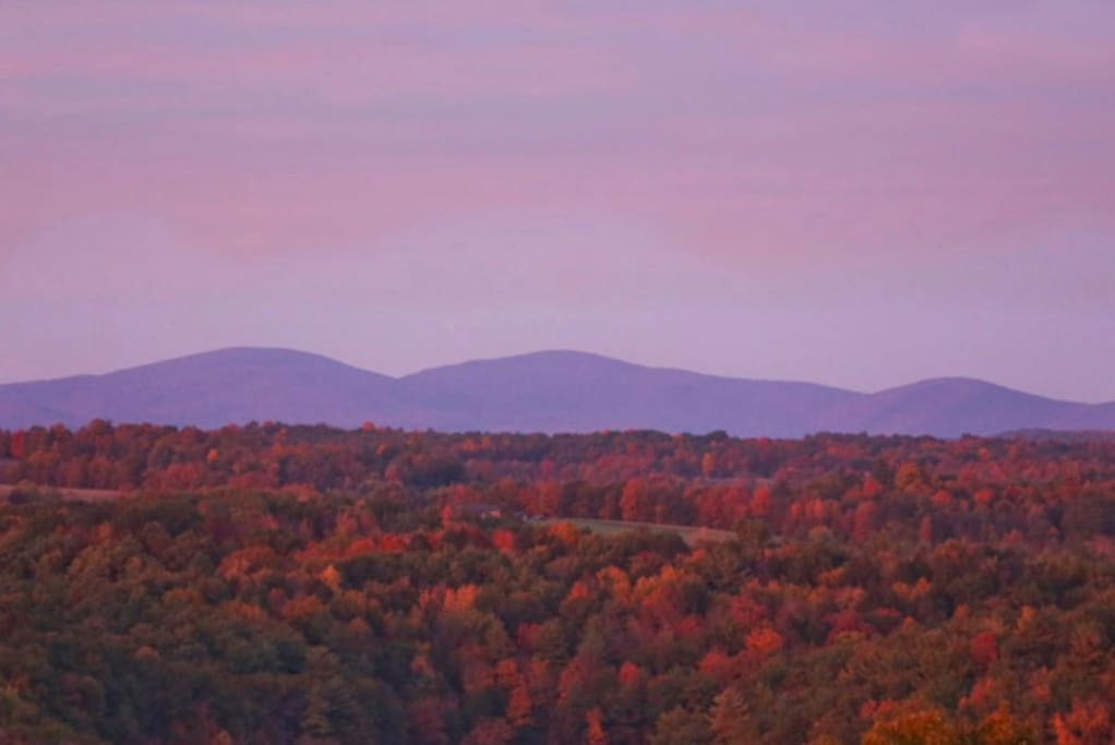 Some of the best fall foliage you will see ANYwhere!