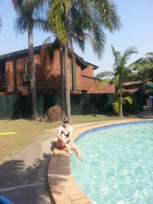 Beautiful tropical pool