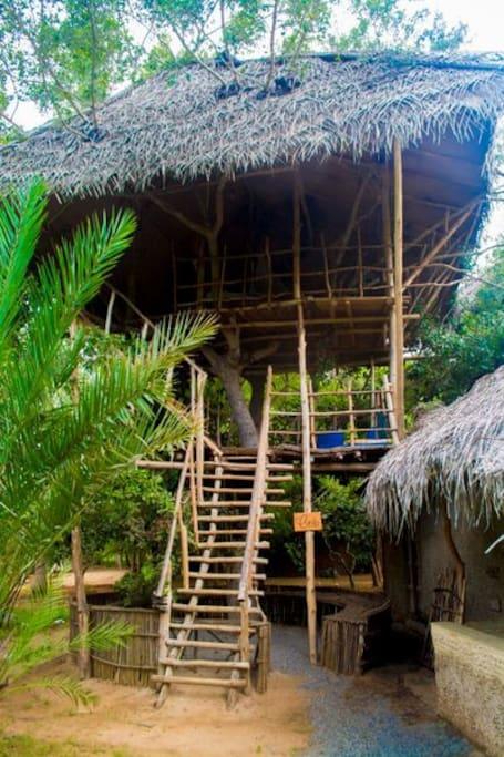 Crib Exterior