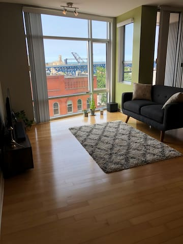 New renovated condo in flats/downtown