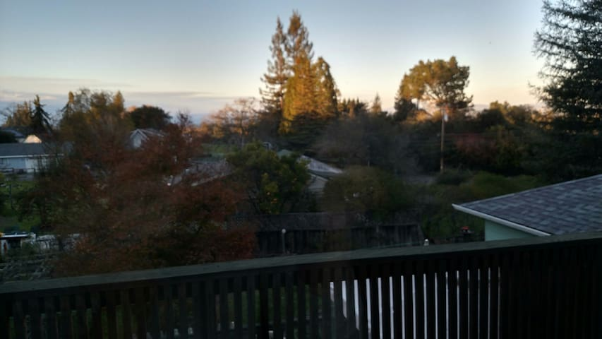 Treetop Haven Apartment - Sebastopol - Apartment