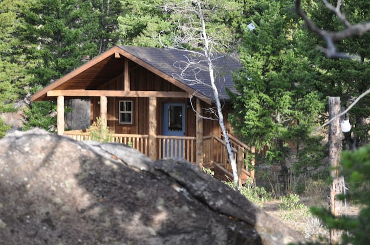 Cozy, mountain cabin on ski trails - Whitehall - Cabaña