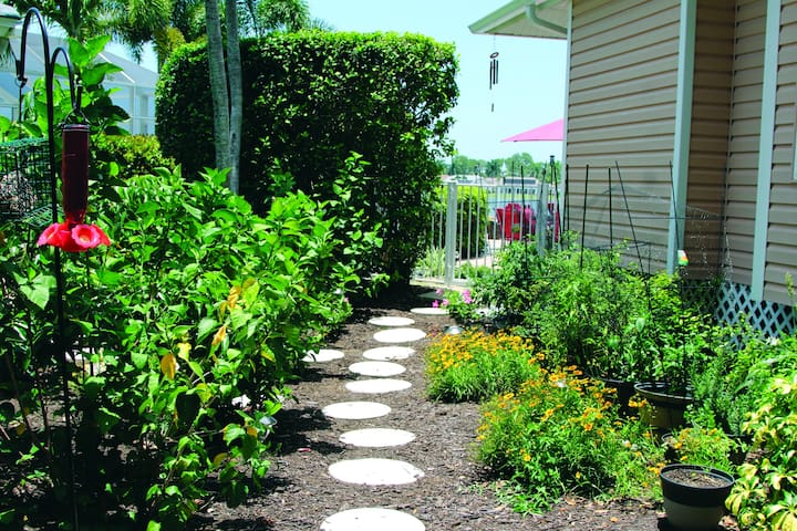 Our lush tropical path to the resort style pool area.  On the right side is our garden area.  We grow herbs, tomatoes, peppers, and more....