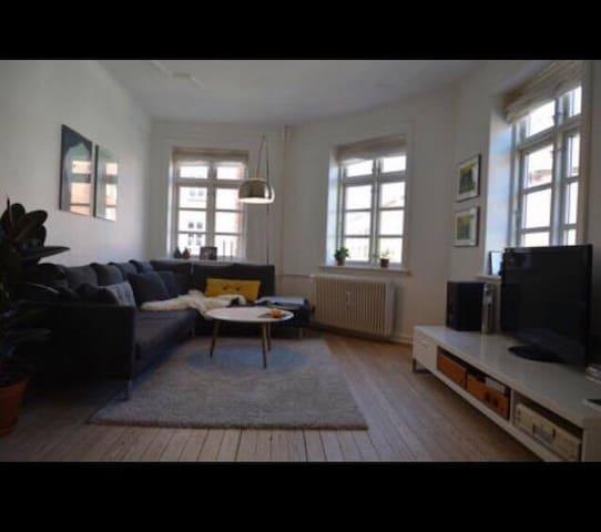 Big, nice apartment at Trøjborg, Århus - Aarhus - Flat