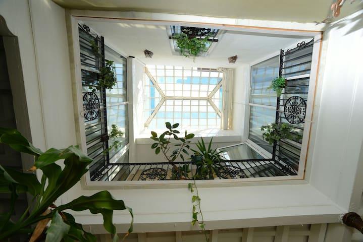 Glass roof of the patio/ Techo de cristal del patio