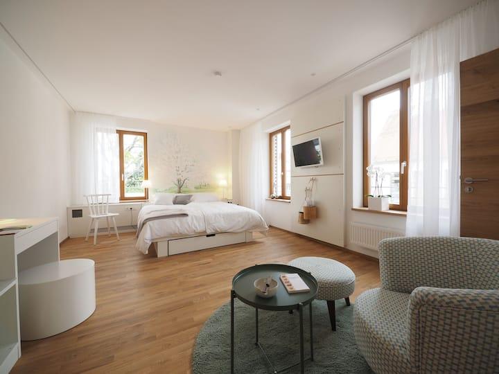 Gasthaus Schwanen, (Nehren), 2 Kirschenfeldzimmer, 28qm, 1 Schlafraum, max. 3 Personen