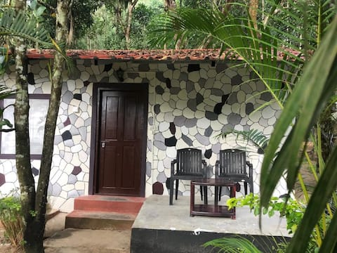 Jungle Cottage near Masinagudi with Excellent Food