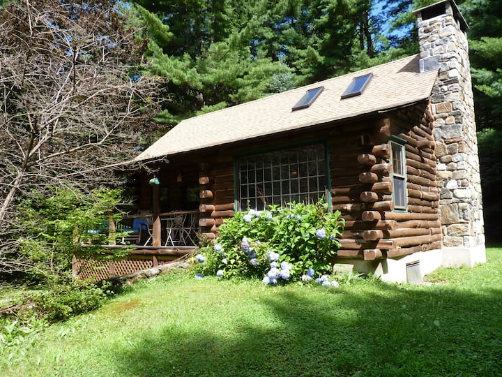 Adorable, storybook log cabin