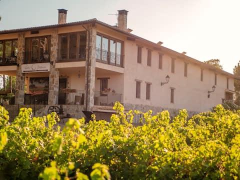Casa Rural en Bodega. La posada de Vitis