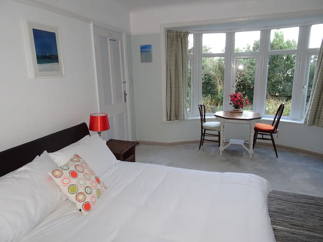 Large, bright ensuite double room - Falmouth - House