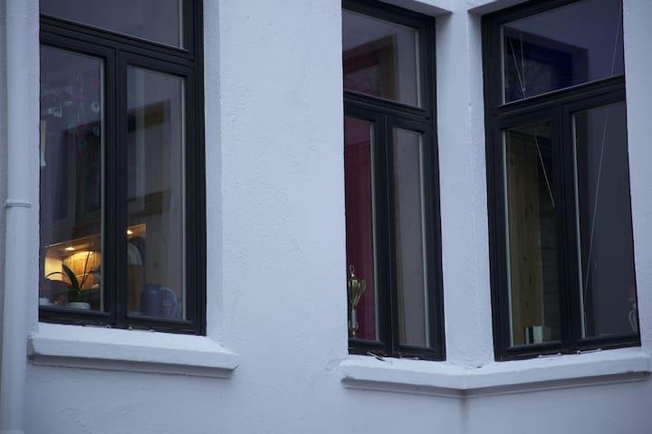 Our windows facing the quiet backyard.