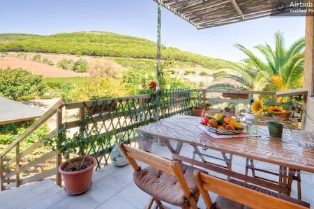 Appartament a 1km de la plage WiFi - Alghero - Hus