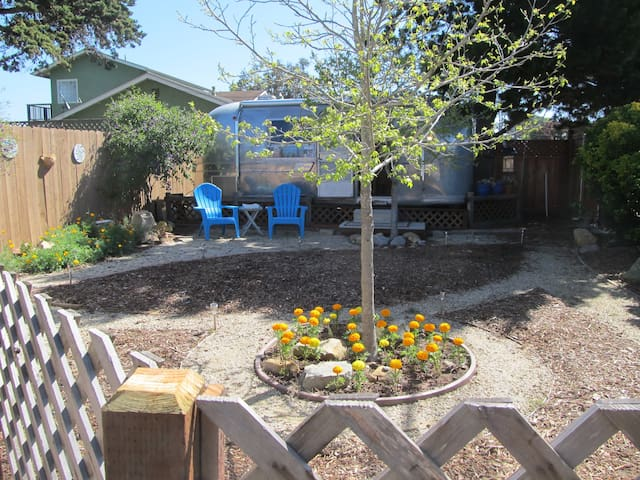 Shelly the Airstream - Baywood-Los Osos - Husbil/husvagn