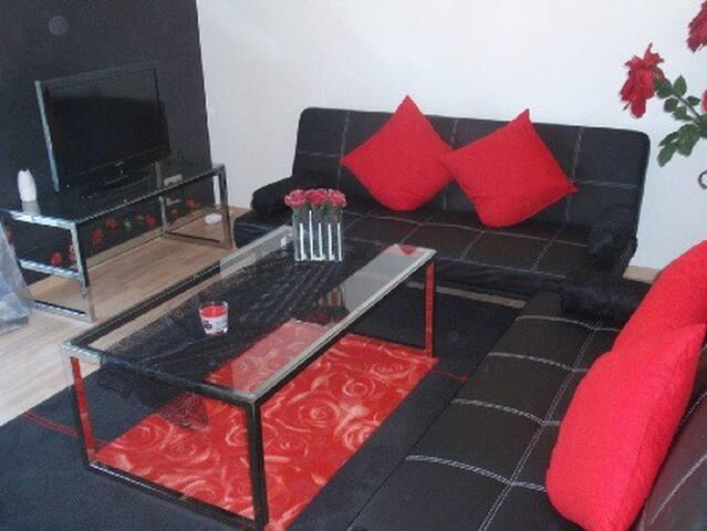 Schön möblierte FeWo im Zentrum - Heidelberg - Apartment