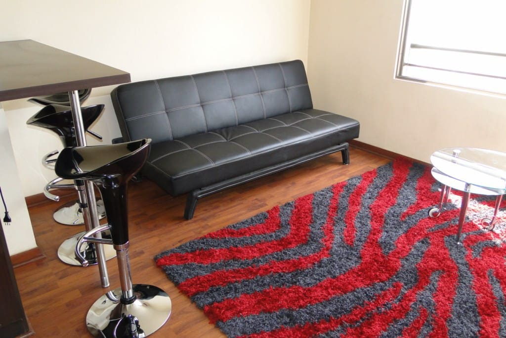 Furnished apartment in Santiago!