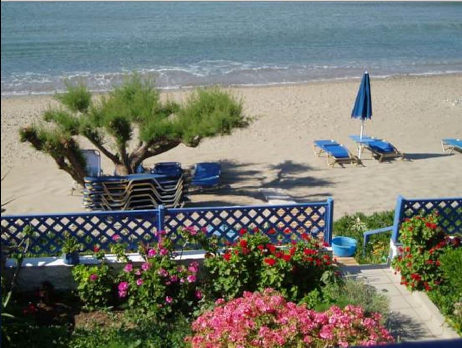 view-exterior-beach