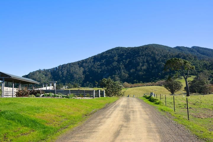 Mountain View Farm - Palm Cottage - Tilba Tilba