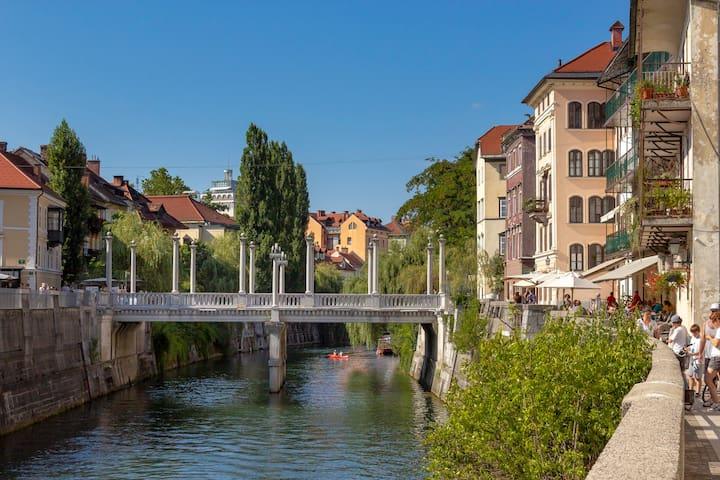Plečnik's bridge
