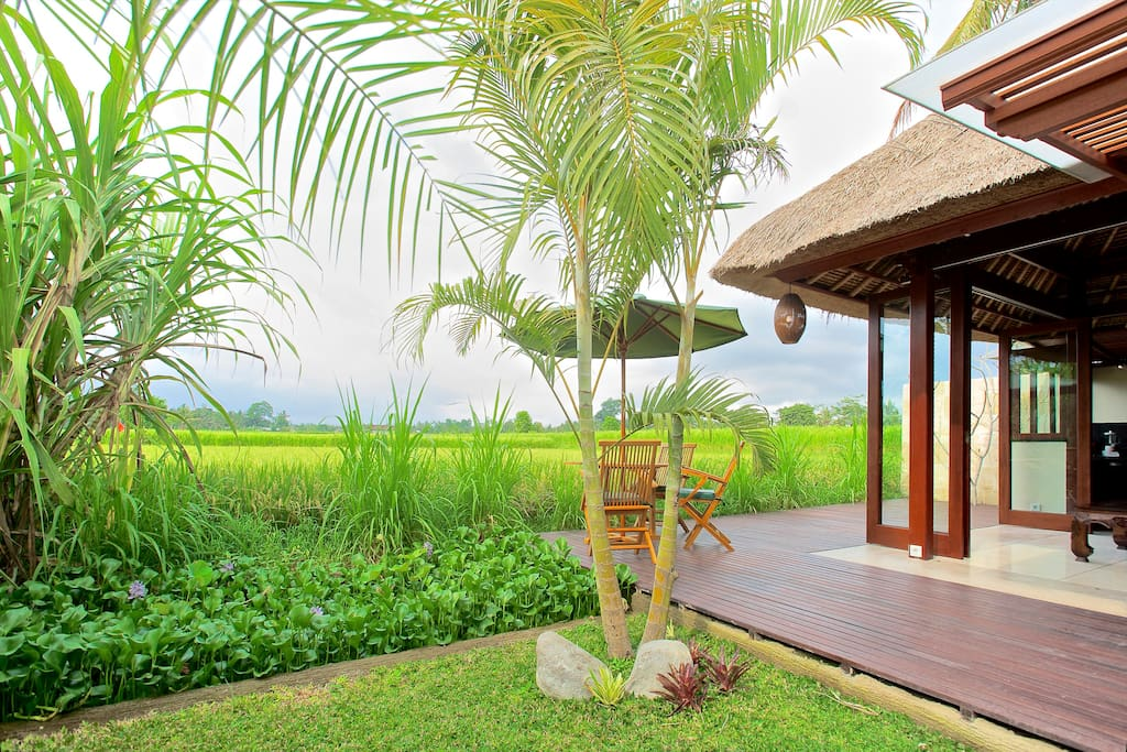 Lovely deck, outside dinning area right on the ricefields