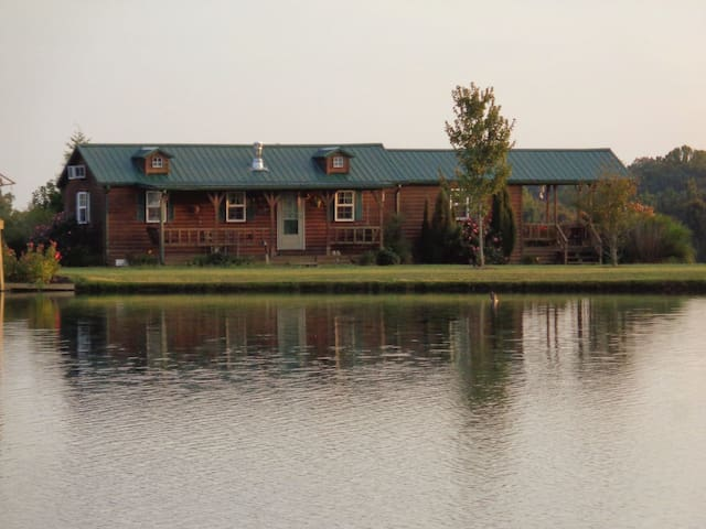Spruce Pine Cabin