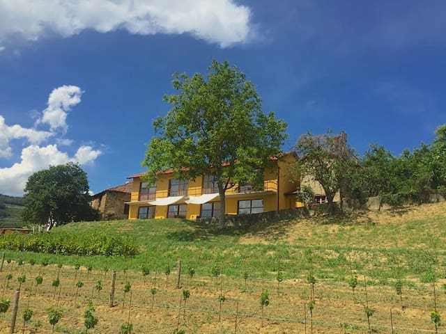 Villa al Plin met lachende wolk