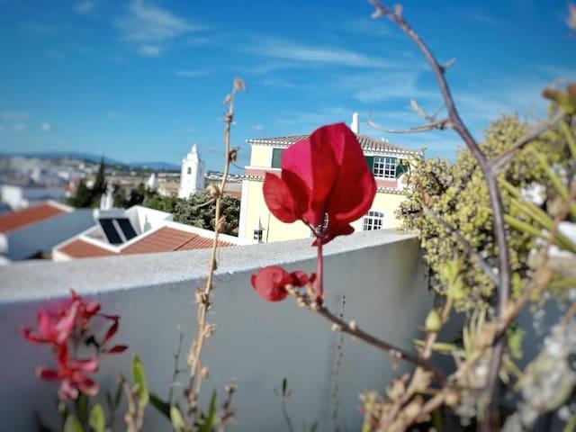 Romantic double room (free wi-fi)