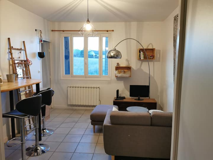 Appartement cocooning proche TCL