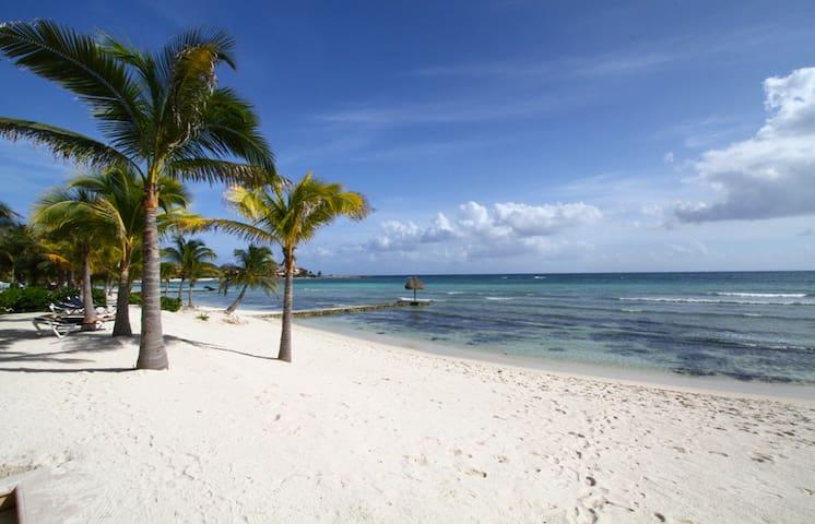 Condo, bord de mer, 3 chambres - Puerto Aventuras - Apartamento