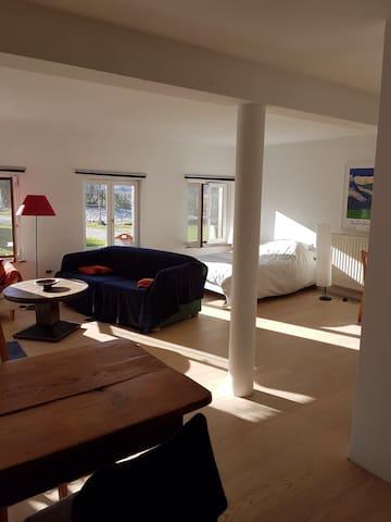 Grand studio avec terrasse - La Wantzenau - Apartment