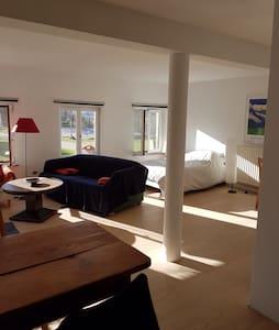Grand studio avec terrasse - La Wantzenau - Appartement