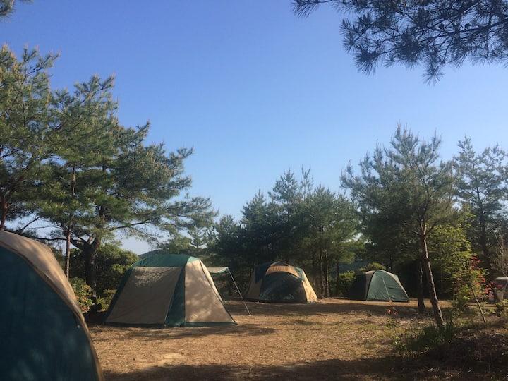 【山みず木】ステラシアター・キャンプサイト(テント)