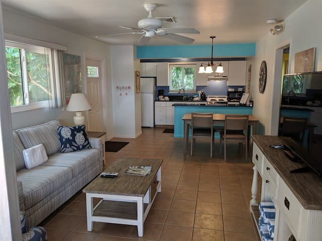 DRIFTWOOD COTTAGE #1 - OLD FLORIDA STYLE COTTAGE, DOG FRIENDLY AND ONLY A SHORT WALK TO BEACH!