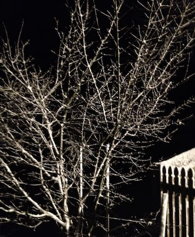 It snowed that day - a chilly night outside!