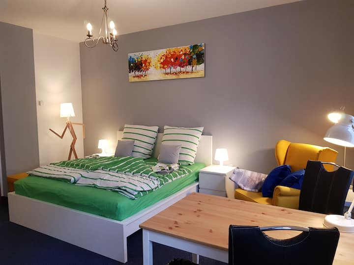 1-Zimmer-Apartment, möbliert, zentral gelegen (#1)
