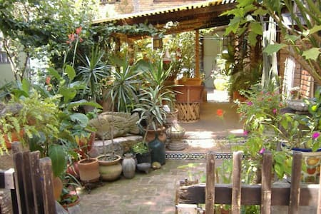 house for rent in morelia mexico