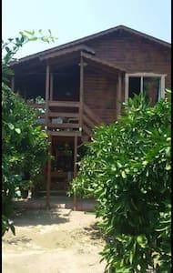 Wooden house - Güzelbahçe - Banglo