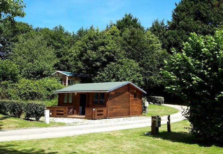 Chalet 5 personnes - Camping Le Petit Bois