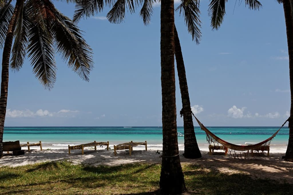 relax in hammocks and sunbeds on the beach