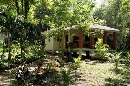 Monkey Falls Jungle Cabin #2 w/ AC, kitchen & WIFI
