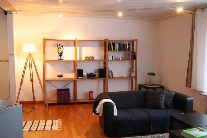 Grosse und helle Wohnung mit interessanten Extras