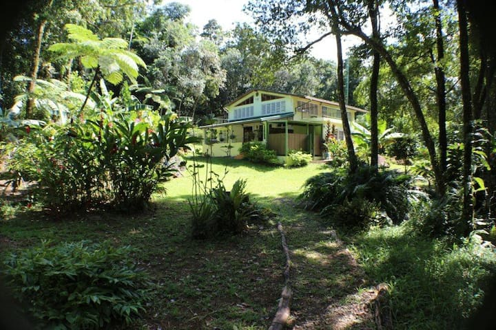 Private Rainforest Home - El Yunque - Rio Grande - House