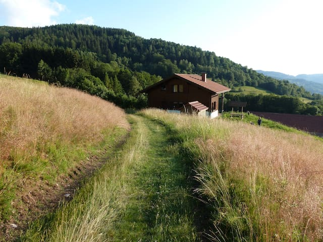 "Chalet ""Les Campanules""  Les Hautes Vosges - Fresse-sur-Moselle - Hytte (i sveitsisk stil)"