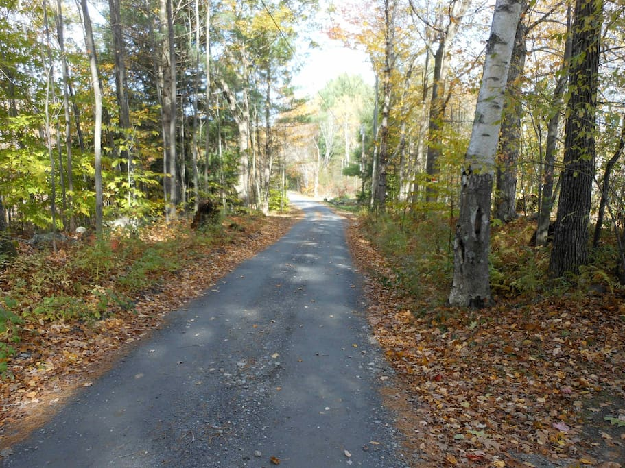 Our Quiet Road - Perfect for Walking!
