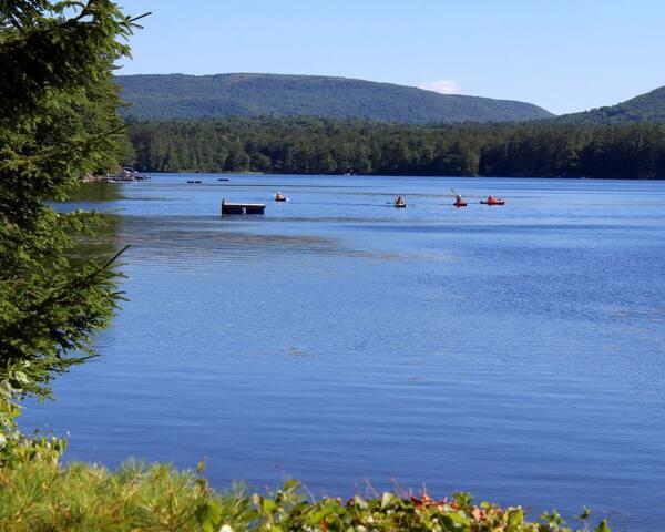 Welcome to lake life