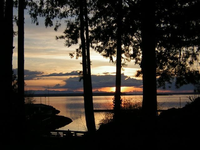 Country Stay Nearby The Sea-Relax! - Powell River - Casa