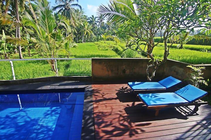 One Bedroom Ricefields View Villa Ubud #2
