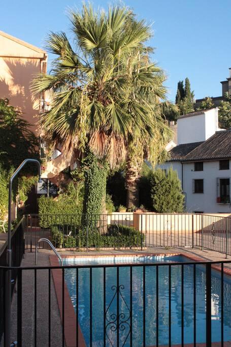 Shared pool and complex garden area / piscina compartida y zona ajardinada