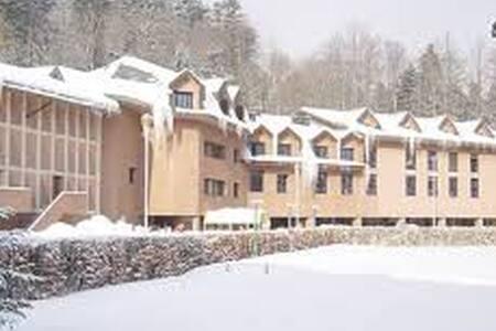 Appartamento Residence Boscolungo - Abetone