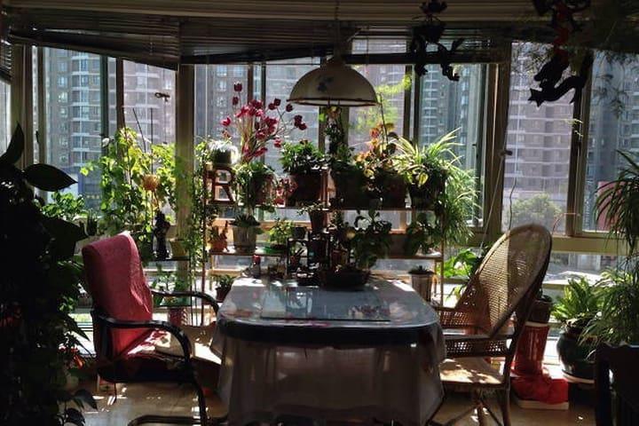 家的温暖感觉---金露苑。浦东陆家嘴金露苑紧邻地铁6号线民生路。